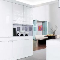 _ARTESIO_glass polar white_brushed pine_functional